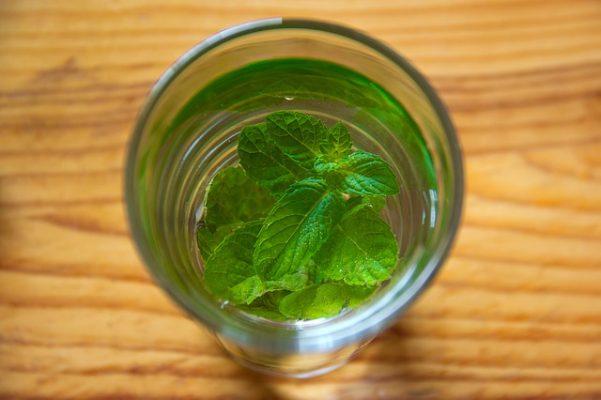 Самые эффективные варианты водной диеты, отзывы и результаты