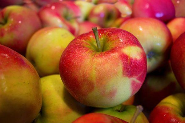 Эффективна ли яблочная диета для похудения, отзыв и результаты