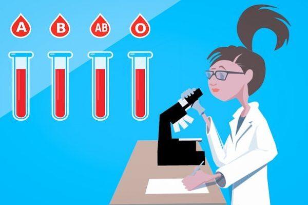 Действенная диета по группе крови: что можно и нельзя есть людям со 2 положительной?