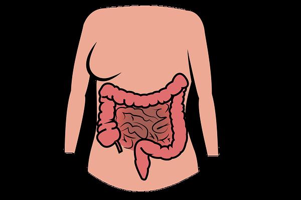 Что можно и нельзя есть при язвенном колите кишечника, лечебная диета и стол номер 4а