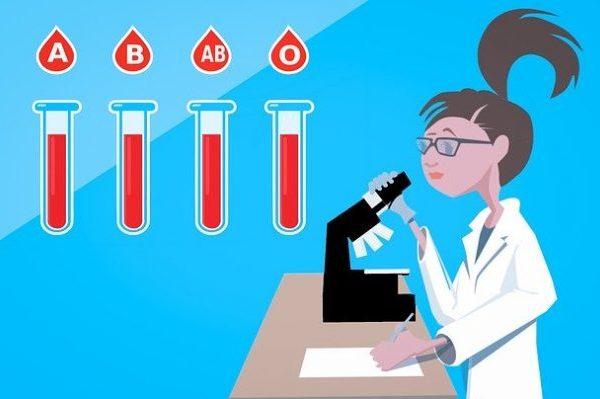 Как правильно худеть по группе крови, общие правила и особенности эффективной диеты