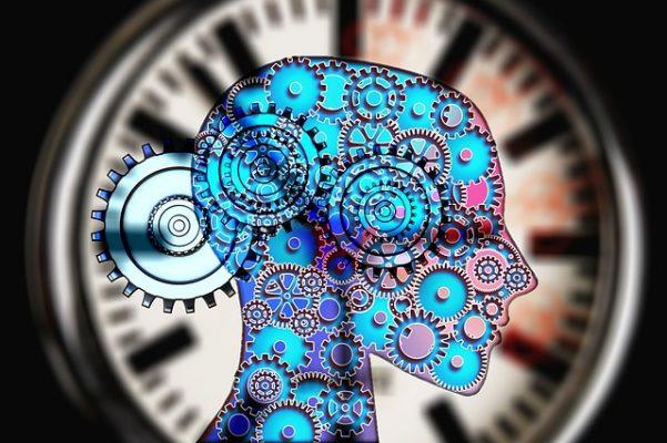 Интересная психология, или всё о человеке для начинающих