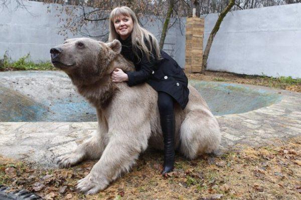 Как живет семья Пантелеенко 28 лет в одном доме с медведем?